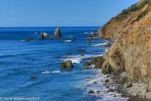 1210-_redwoods-ca-coast-_1876