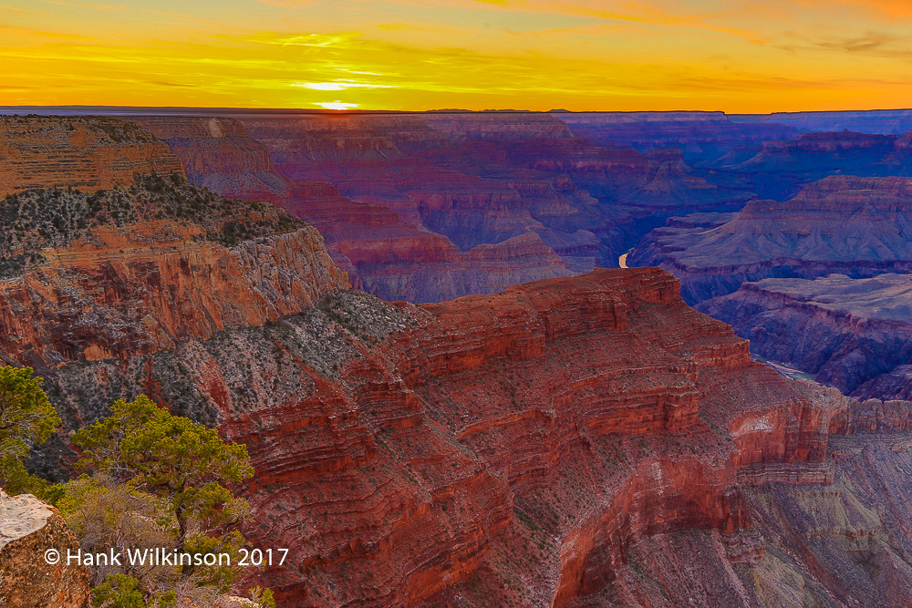 1503 _Grand Canyon _1198