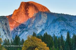1210 _Yosemite _2884